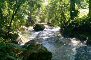 TRILHA COM CACHOEIRAS – ESCORREDOURO