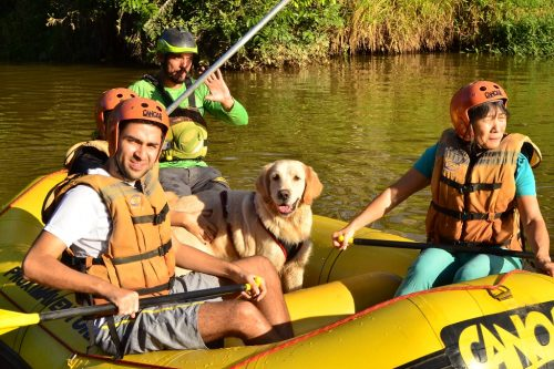 DOG RAFTING – PET ADVENTURE