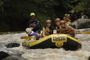 RAFTING DOG – PET ADVENTURE